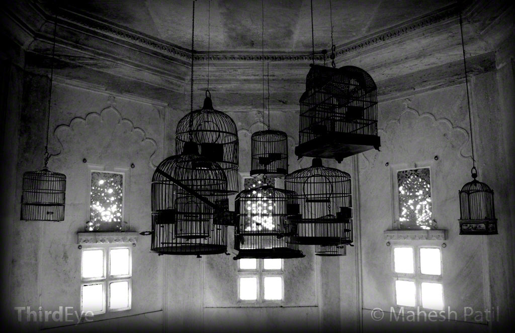 Rajasthan 03: Cages