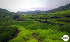 Bhivpuri_24