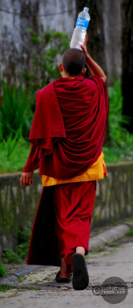 Water Bottle, Monk, Sikkim, Rumtek Monastery, Mahesh Patil