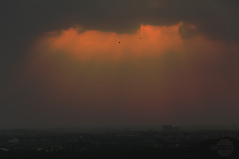 Half Past Rain, Mahesh Patil